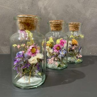 DRYFLOWERS im Glas