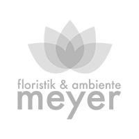 Goldene Zwiebelvase mit Blüten arrangiert