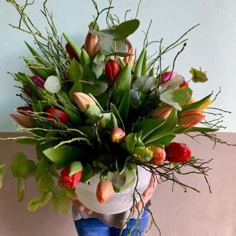 Große Tulpen Liebe